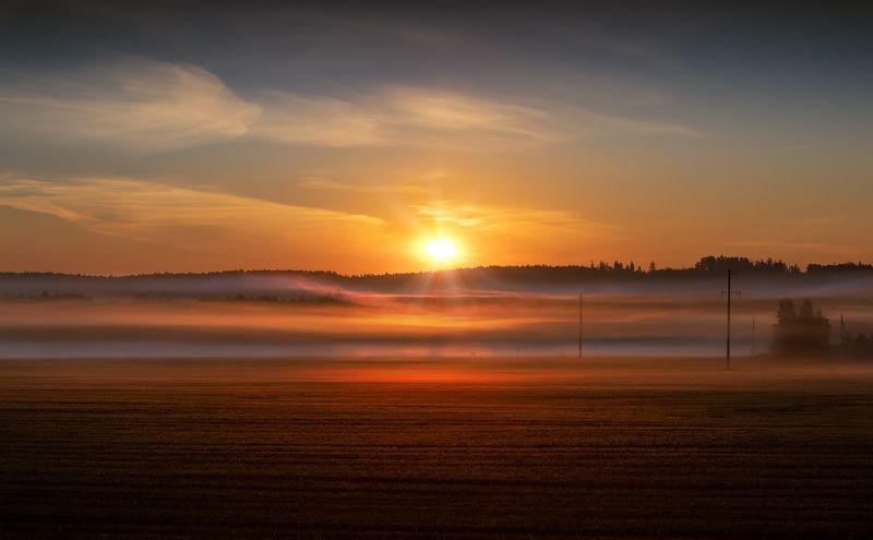 осень, рассвет, поле, небо, туман, Линии туманаphoto preview
