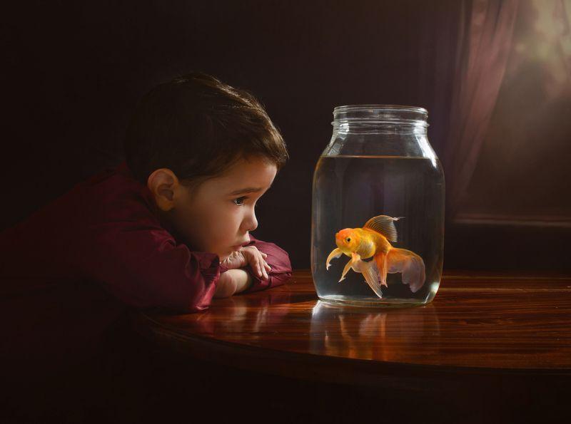 #yanetfotografia Pedrito y su Goldfish.photo preview
