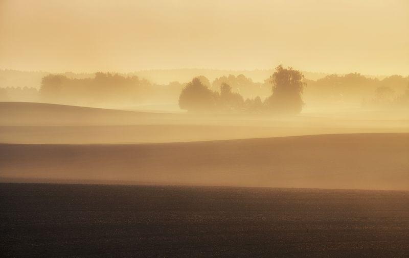 autumn, sky, field, morning, fresh, sunrise, poland, trees, mist, sunlight Autumnphoto preview