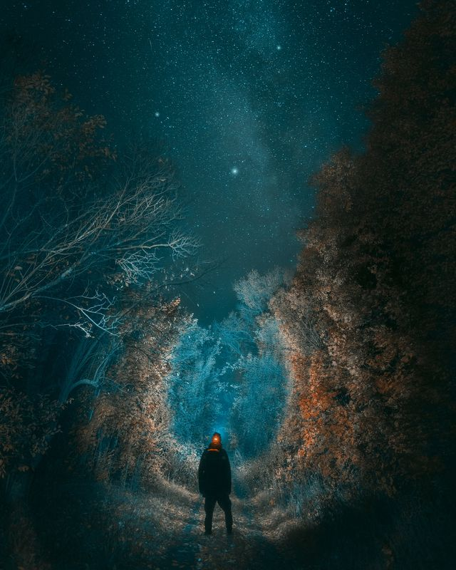 ночь, звезды, дорога, природа, Тульская область, пейзаж Путьphoto preview