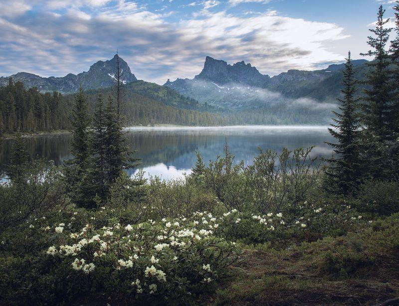 Утро на озере Светлое. Ергакиphoto preview