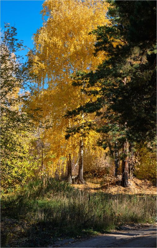 Осень 4photo preview