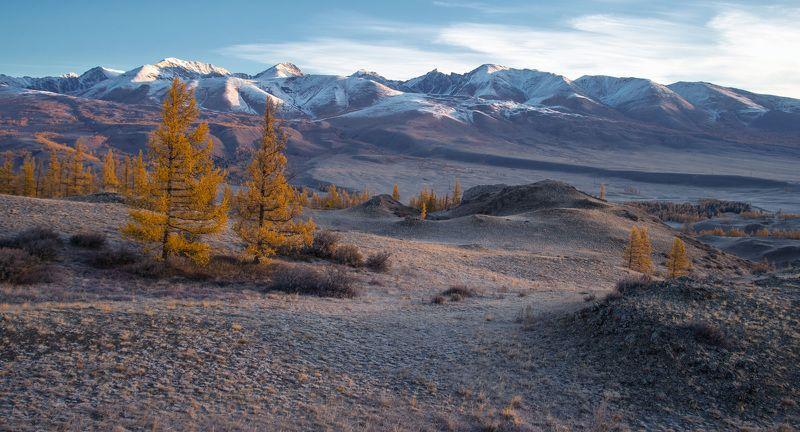 Курайская степь начало октября фото превью