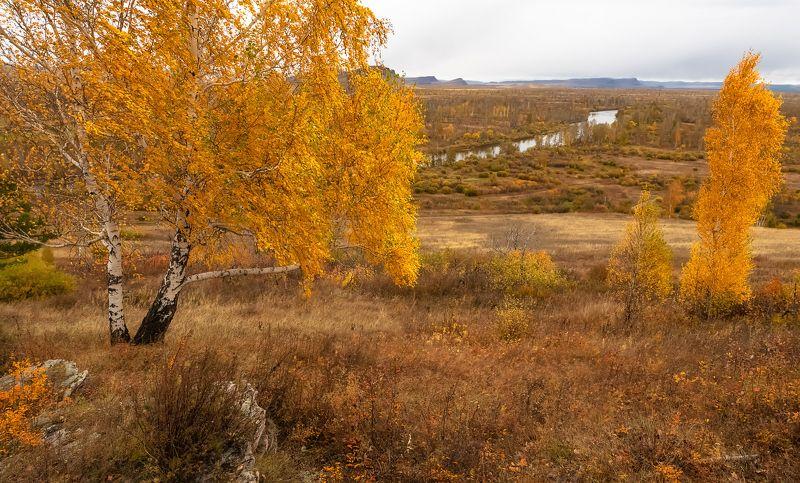 хакасия, сундуки, долина онло.,осень Золото Хакасииphoto preview
