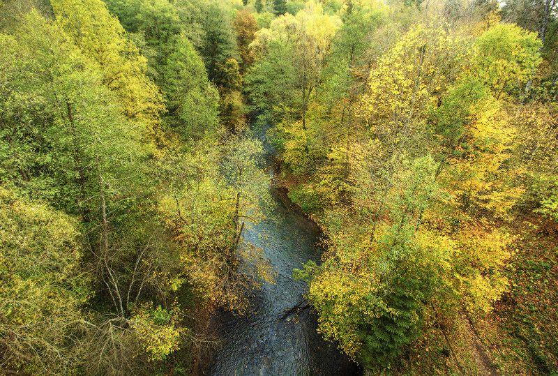 Осень в Краснолесье.photo preview