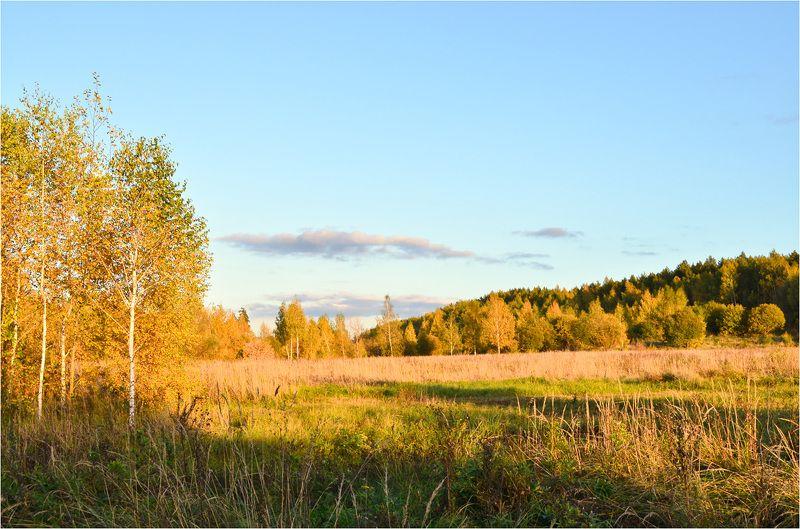 осень Осень золотаяphoto preview