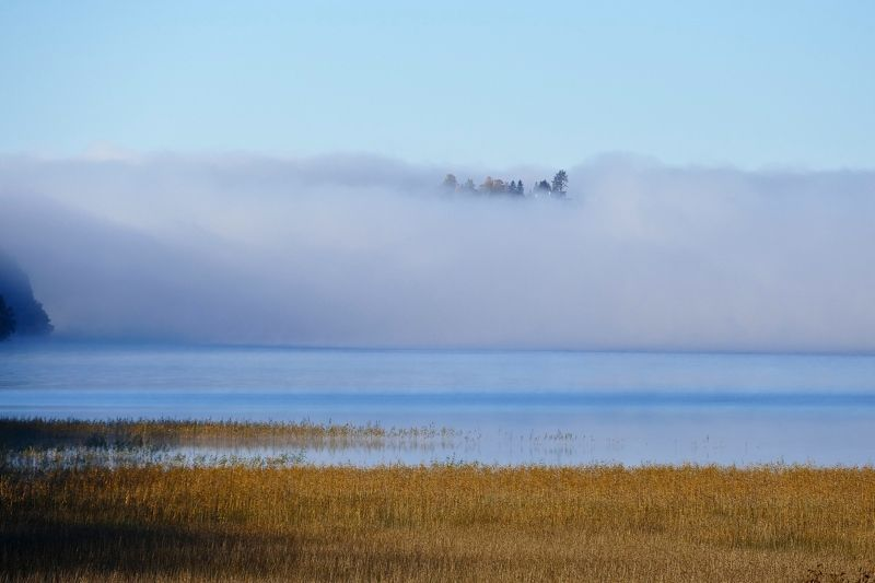 Landscape, nature, Autumn, Fall, fog, mist, forest, lake, water, straw, colors, осень, туман, Norway,  Лес открываетсяphoto preview