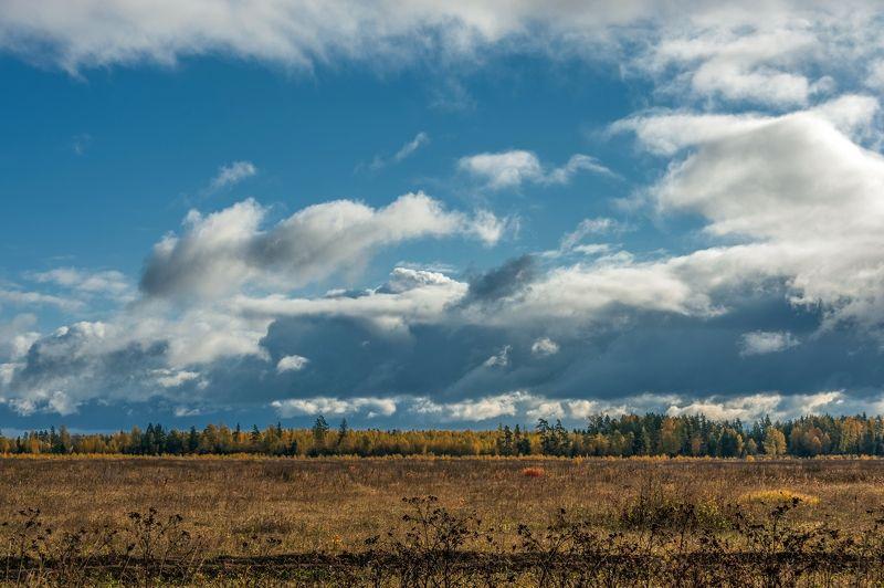 Пейзаж по Пушкинуphoto preview