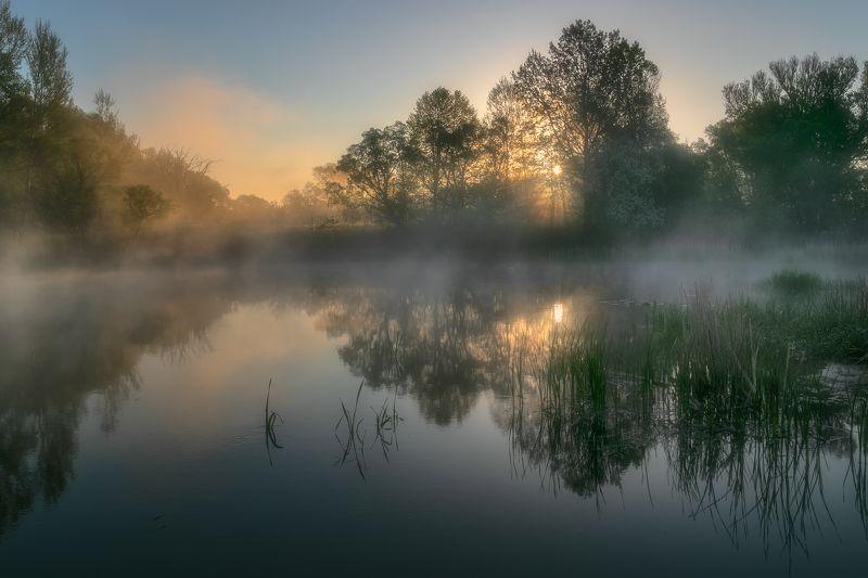Утро на Свапеphoto preview