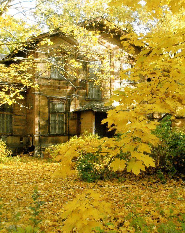 пейзаж, осень, октябрь, настроение Незримое время бессмертноphoto preview