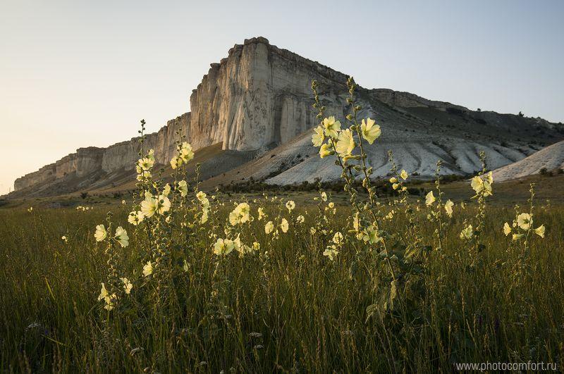 пейзаж, цветы, горы, лето, зелень, nature, landscape, rock, mountain, flowers, yellow, green, scenery Белая скала - летнее цветениеphoto preview