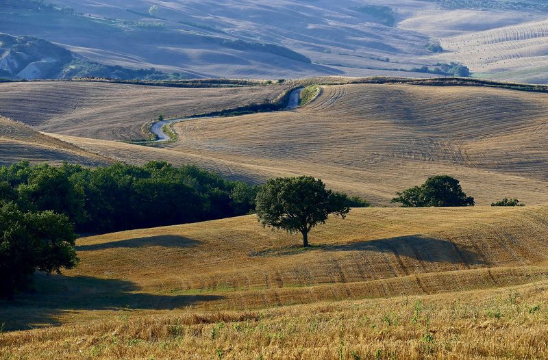 Landscapes, Italy, Tuscany, nature, fields, trees, road, colors, shadow, light, day, travel,  Хлеба убраныphoto preview