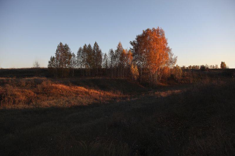 осень октябрь октябрьphoto preview