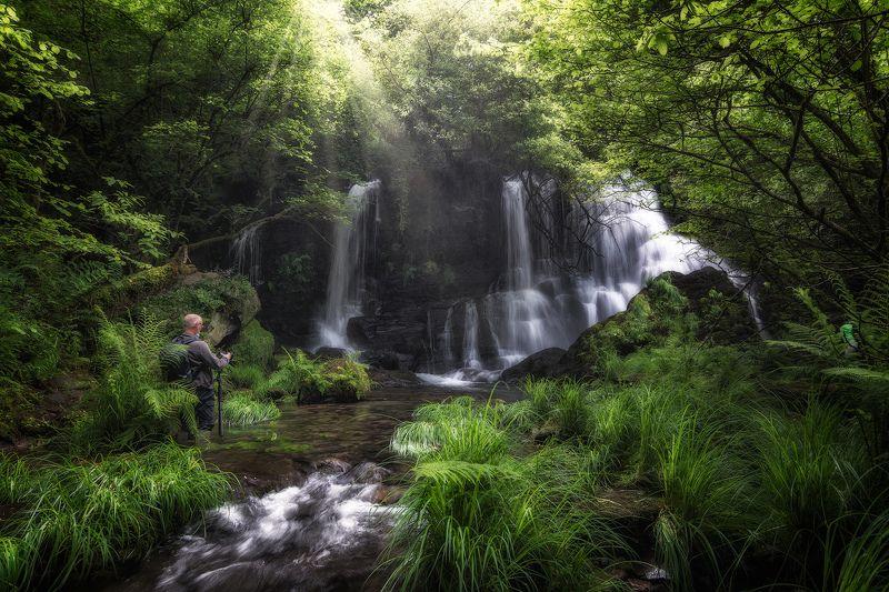 waterfall water wood forest green sun Chacin Waterfallphoto preview