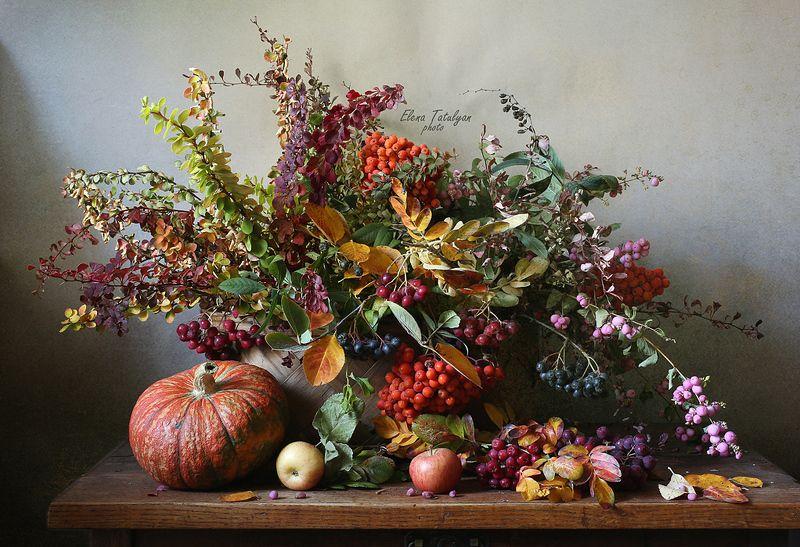 букет, тыква Осенний фейерверкphoto preview