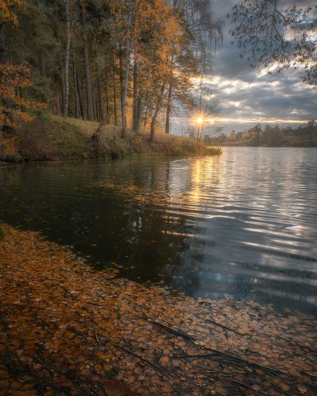 закат, солнце, природа, осень, пейзаж, Московская область Осеннее солнцеphoto preview