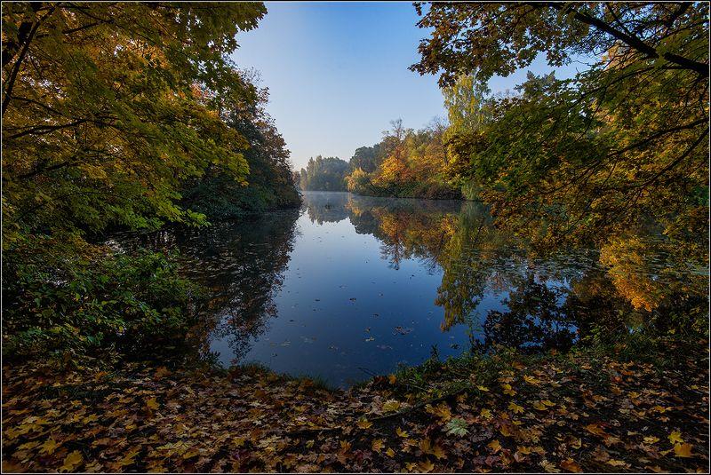 москва, осень, озеро Московская Осеньphoto preview