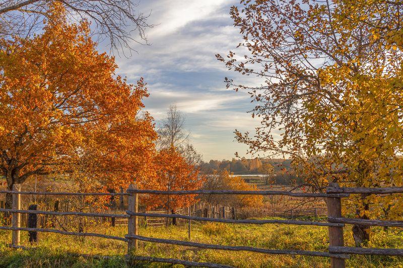 Тверская область Золотая осень в деревнеphoto preview