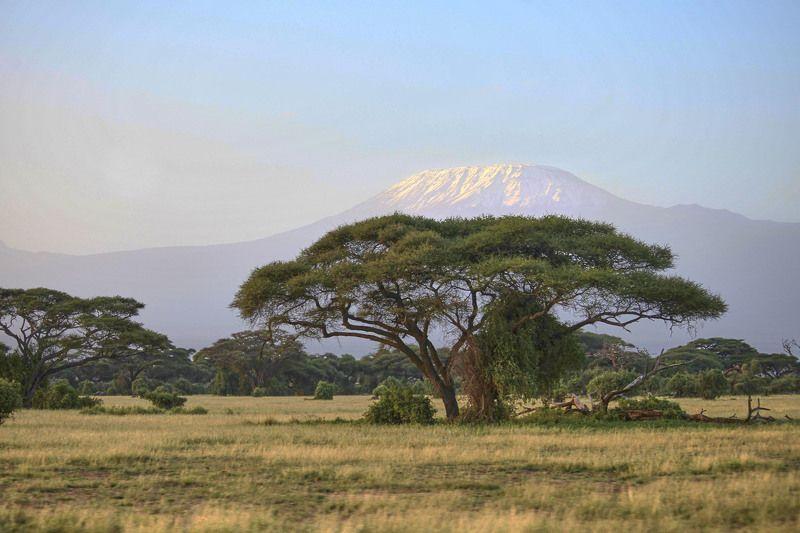 Я вырос на произведениях Эрнеста Хемингуэя, а его рассказ «Снега Килиманджаро» стал моим философским  жизненным кредо - жизнь каждого человека уникальна, жизнь   это- сейчас,  в жизни  все поступки совершаем мы сами….  Став более  зрелым, путешествуя по photo preview
