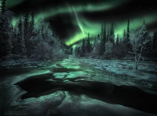 Начало зимы под изумрудным светом Авроры