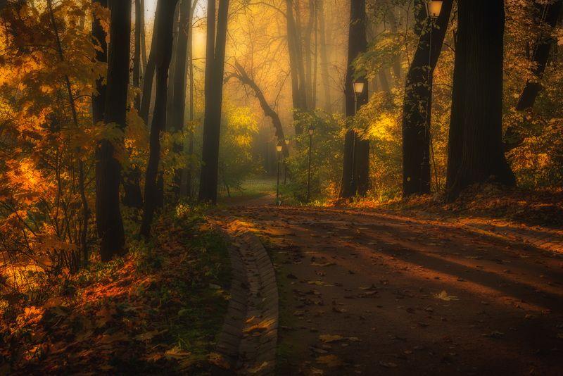 Осень фото превью