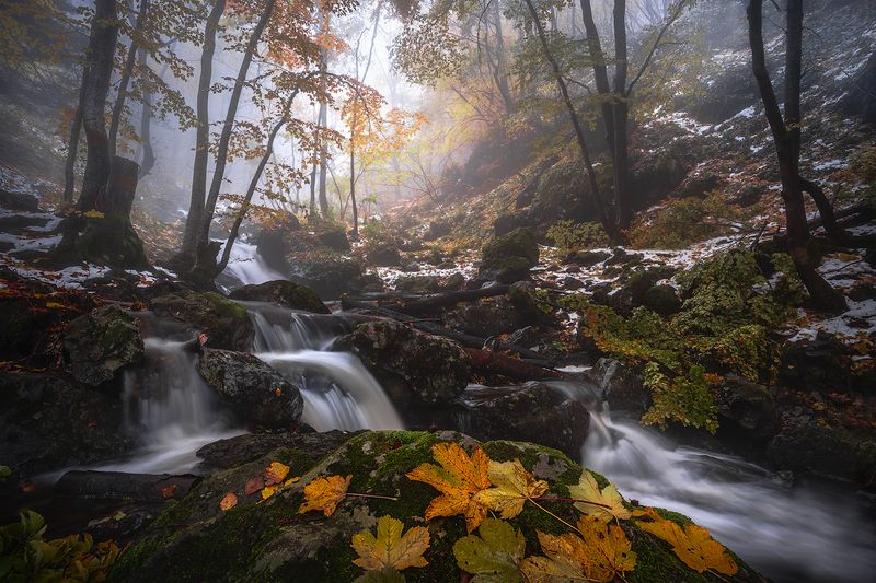 landscape nature scenery forest wood autumn mist misty fog foggy river waterfall colors mountain vitosha bulgaria туман лес Colors and seasonsphoto preview