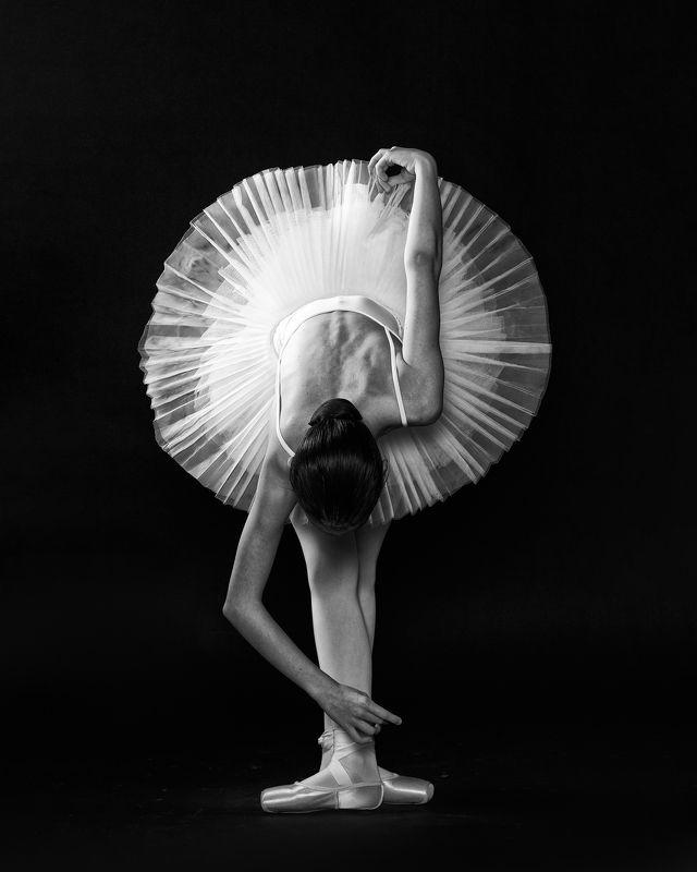 балет Геометрия балетаphoto preview