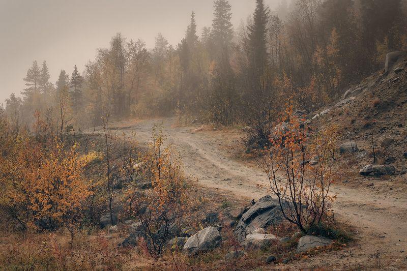 осень, скалы, камни, деревья, лес, желтый, сентябрь, пейзаж, природа, путешествие, заполярье Северная осеньphoto preview