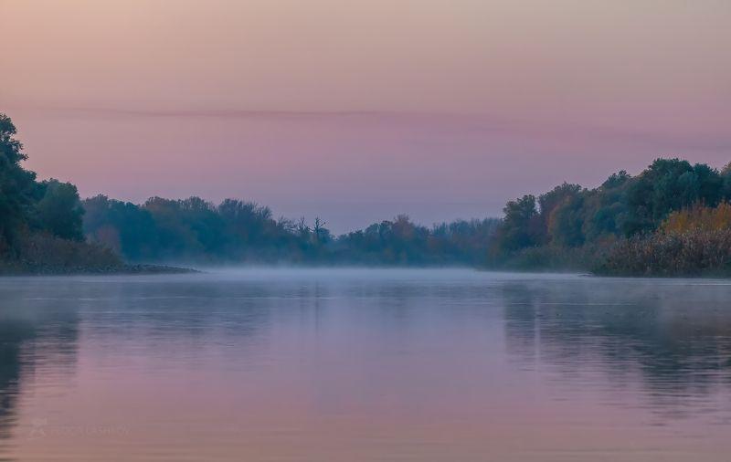 Астраханская область, Астраханский заповедник, река, вода, Волга, путешествие, дельта Волги, заря, рассвет, осень, осенний, туман, туманное, синева, деревья, лес, птицы, птица, цапля, гуси, отражение,  Акварели из заповедникаphoto preview