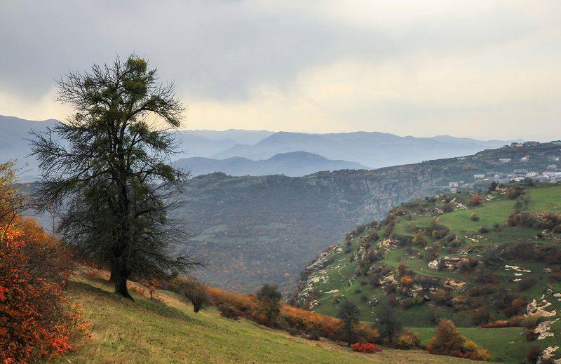 горы,пейзаж,дагестан,дахадаевский район,осень, Горный пейзаж..photo preview