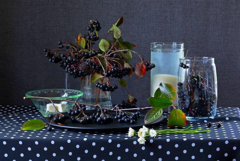натюрморт, фотонатюрморт, осень, рябина, цветы, ягода, сахар,  наталья казанцева Черное и белоеphoto preview