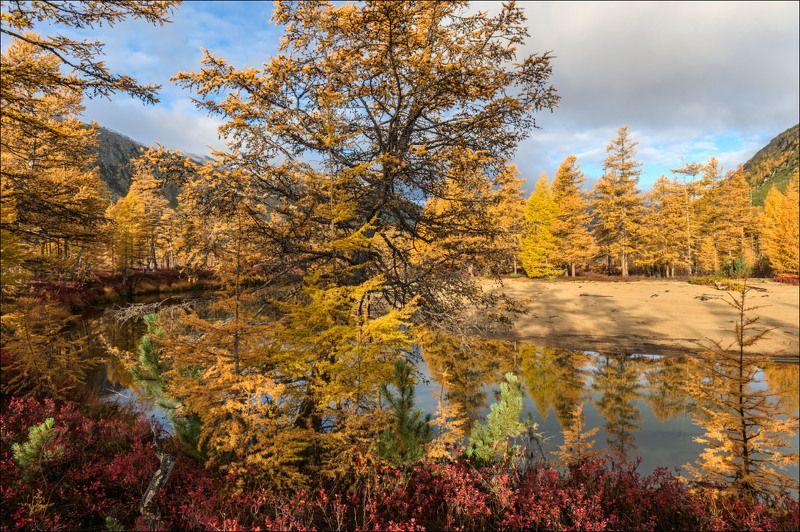 Колымская осеньphoto preview