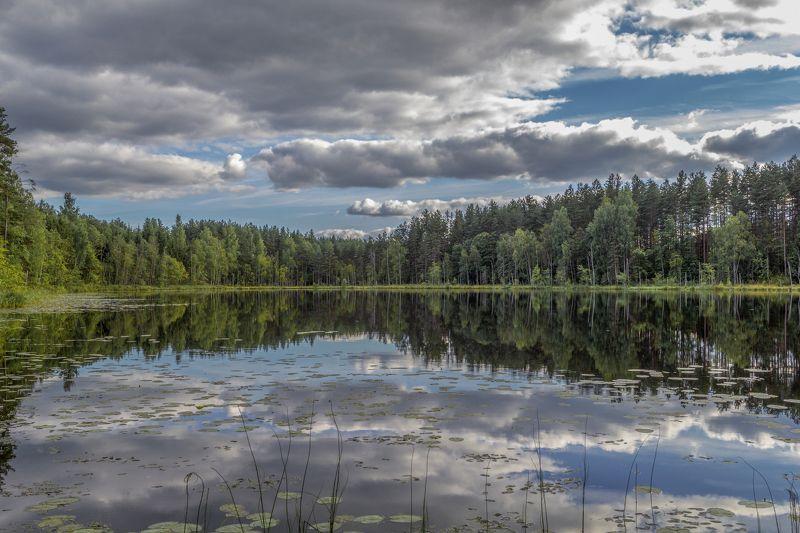Тверская область Зеркальное озеро Белоеphoto preview
