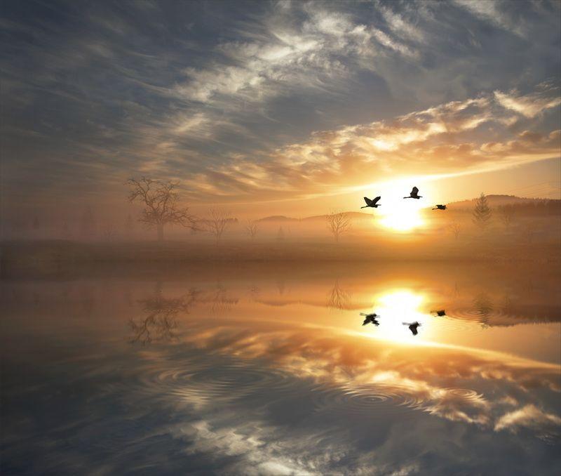 берег, рассвет, красивые, места, с, отражением, в, воде Родные берегаphoto preview