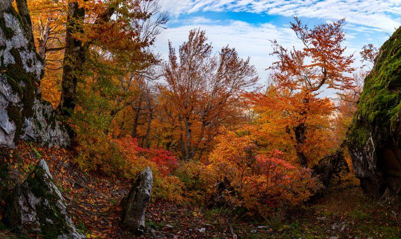 осень,бештау,козьи скалы,кмв,природа,пейзаж Осень на горе Бештауphoto preview