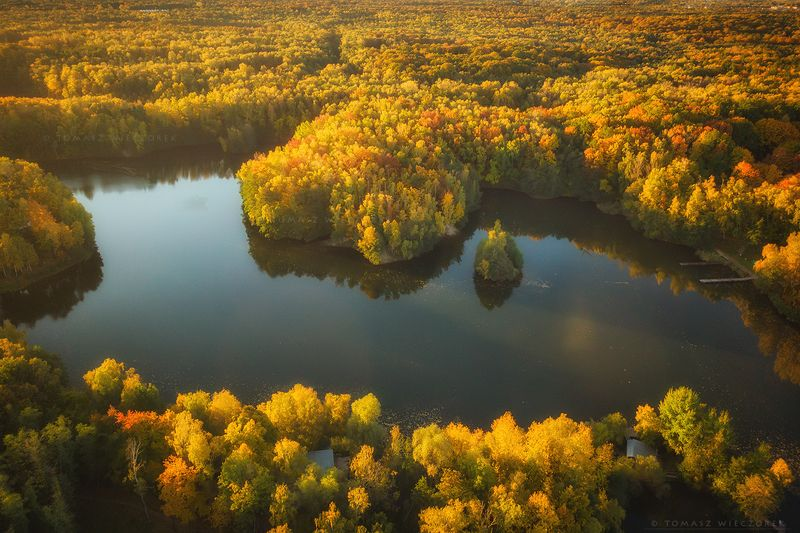 landscape, poland, light, autumn, awesome, amazing, sunrise, sunset, lovely, nature, travel, drone, trees, orange, shadows, dji, lake, colors Colors of autumnphoto preview