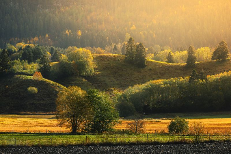 norway,autumn,rural,light,norwegian,landscape, Autumnal memoriesphoto preview