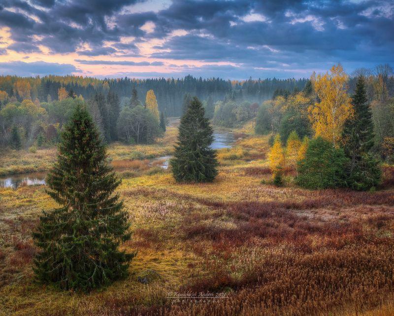 ... осень однако ...photo preview