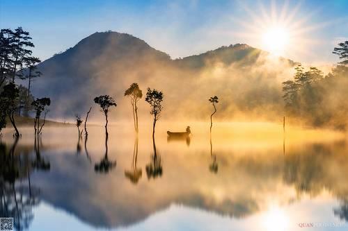 Morning Splendor