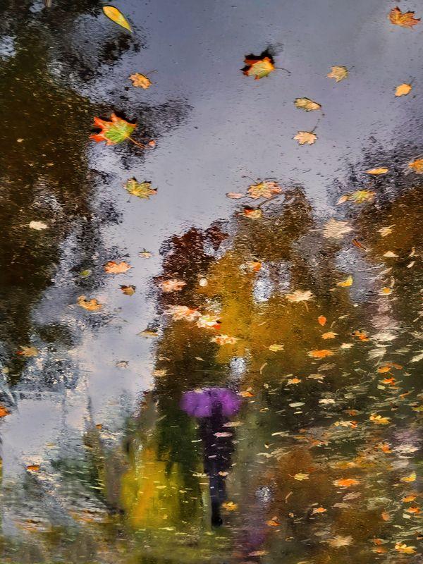 Осень рисует отражения на асфальте...photo preview