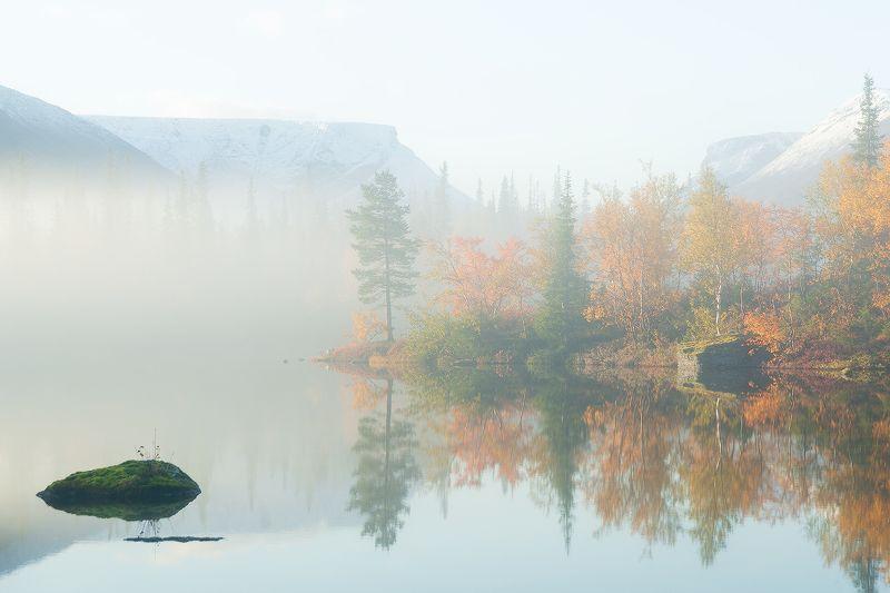 озеро, туман, Хибины, Мурманск, область, Россия, сентябрь, осень. листья, туман, оранжевый, утро, остров, камень Утро на Полигональных озерахphoto preview