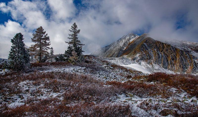 горы Рудный Алтайphoto preview