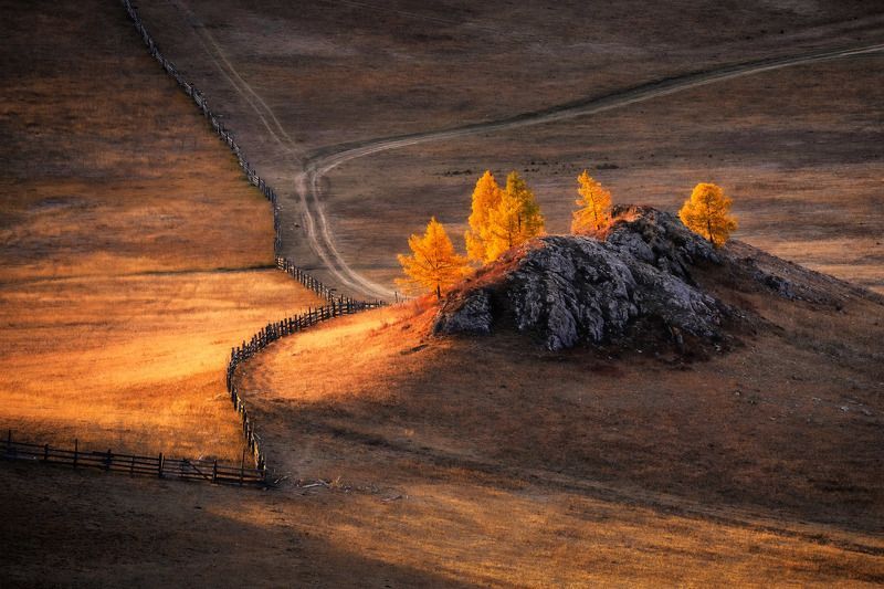 russia, altay, morning, autumn, cold, sunrise, light, landscape, outdoor, travel Осенние кострыphoto preview
