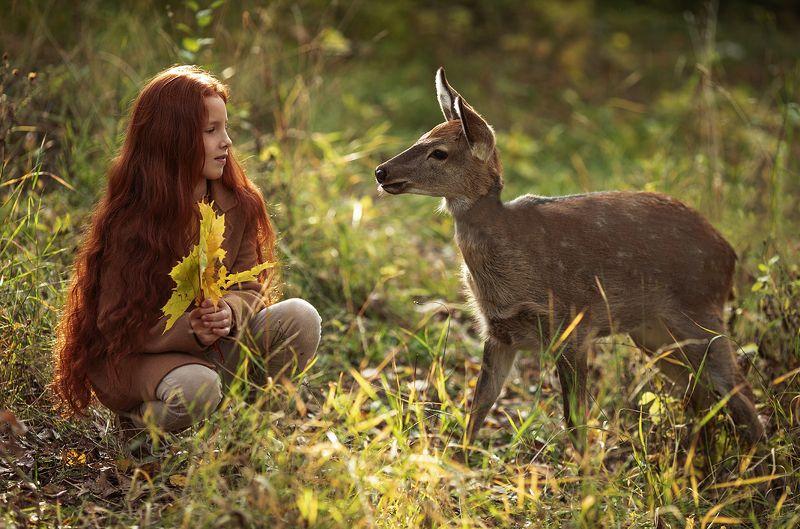 девочка, оленёнок, сюжет, осень,природа, girl, fawn,story, autumn, nature Чудесное знакомствоphoto preview
