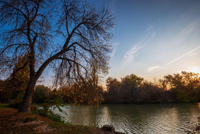 осень Осенний вечерphoto preview