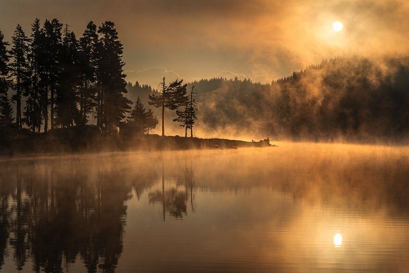 landscape nature scenery summer sunrise morning dawn lake reflection fog foggy mist misty clouds mountain trees пейзаж рассвет горы озеро Sunny morningphoto preview