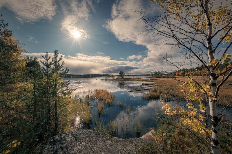 осень, река, вода, солнце, лес, деревья, скалы, камни, желтый, золотой, сентябрь, пейзаж, природа, путешествие, карелия, сегежа Сегежаphoto preview
