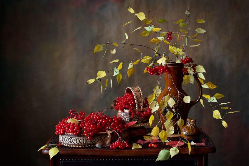 миламиронова, фотонатюрморт, осень, ягоды, калина, урожай, букет, кувшин, берёза С калиной...photo preview
