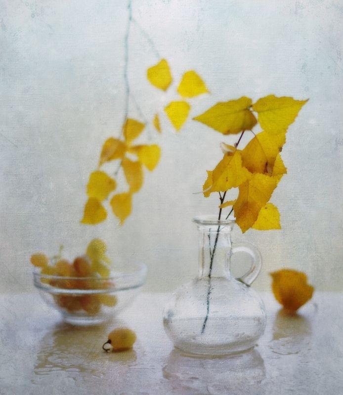 натюрморт,композиция,листья,осень осенние зарисовки...photo preview