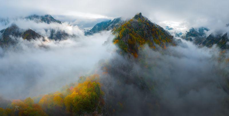 кавказ, кавказские горы, горы, гора, осень, жёлтый, осенний, рассвет, туман, туманный, облака, свет, ущелье, долина, хребет, лес, лесное, путешествие, Пробуждение горphoto preview